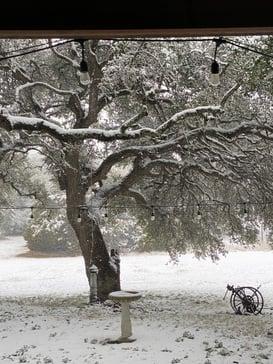 Rare snowfall at Ranch